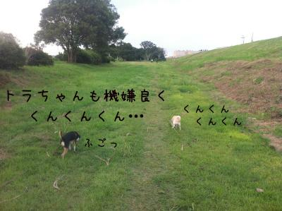 IMG_0092_01.jpg