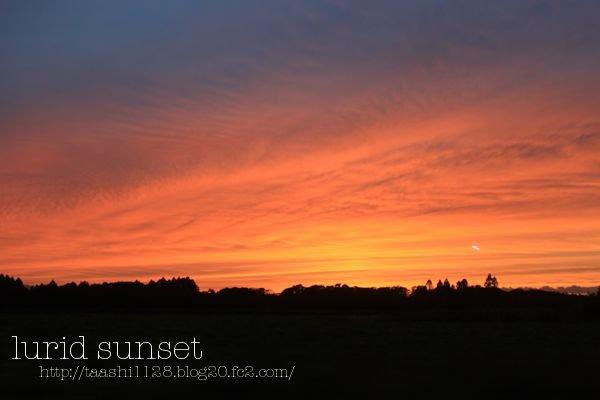 sunset1011.jpg