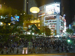 チーズケーキカフェ渋谷3