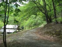 右ヶ谷キャンプ場-24
