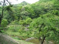 右ヶ谷キャンプ場-29
