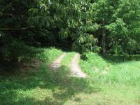 樫の森野営場_11b