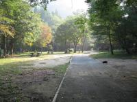 立野野営場-18