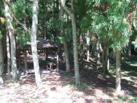立野野営場-25