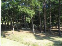 県央の森公園キャンプ場_17