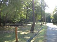県央の森公園キャンプ場_19