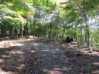 11_県央の森簡易作業棟