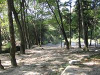 海田総合公園キャンプ場_05