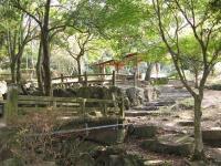 海田総合公園キャンプ場_28