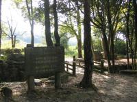 海田総合公園キャンプ場_26