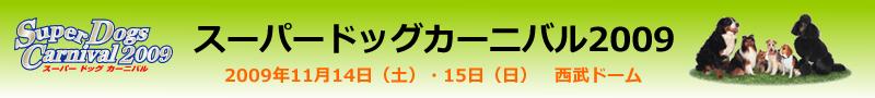 SPDC_header.png