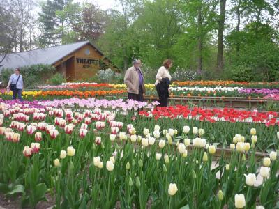 parc floral10-4