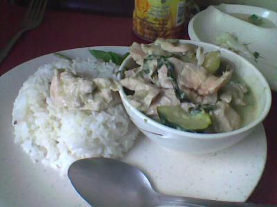 thai curry vert
