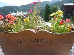 karellis1.jpg