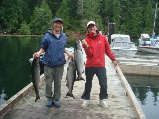2011 salmon