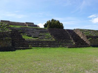 メキシコ 緑