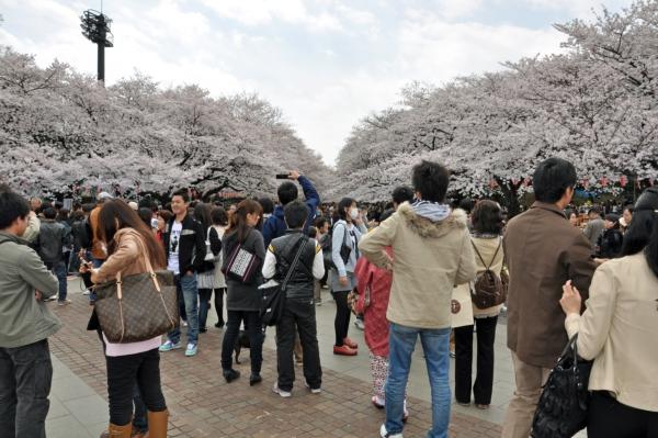 201004上野01