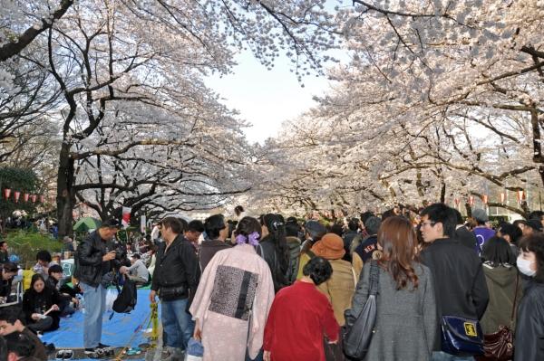 201004上野15