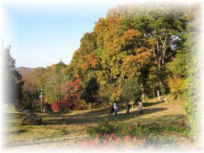 2010年11月21日弓削牧場①