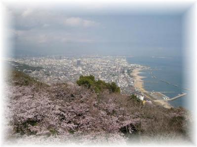 2011年4月9日須磨浦山上遊園①