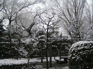 我家のテラスからの雪景色