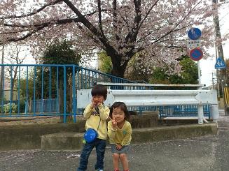 桜双子その2。