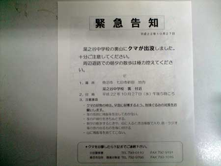CA391571.jpg