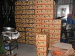 カップラーメン100箱2400食分