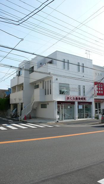 真っ白のタイル貼りの外観はすっきりしていてオシャレですね。近隣にスーパーやマツキヨなどがあって便利です。