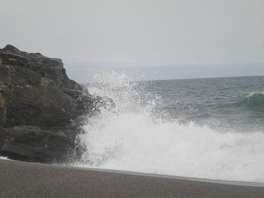20110505011.jpg