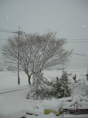 高野町の初雪
