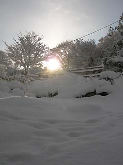 雪の日の出