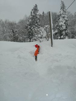雪の迷路?