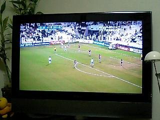 サッカー観戦?