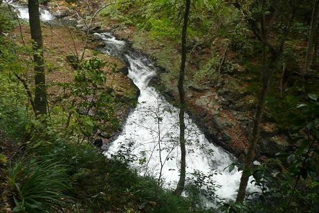 渓谷に流れ込む滝