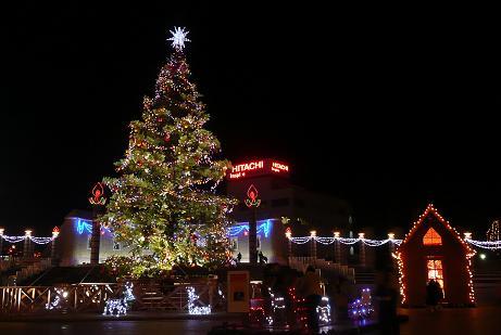天然のモミの木のクリスマスツリー