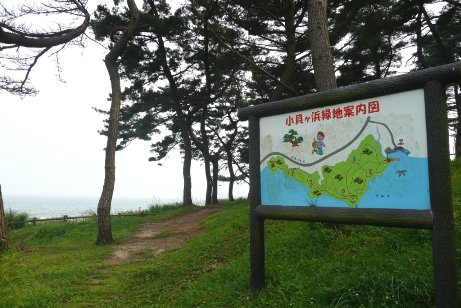小貝ヶ浜緑地の案内