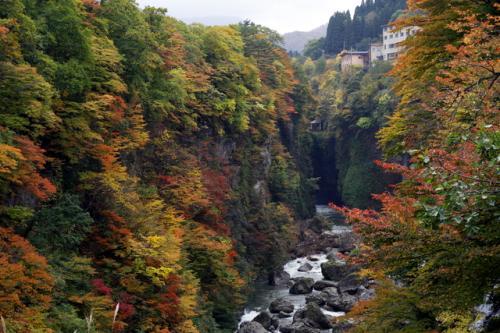 2008_10_25_3097-copy-1.jpg