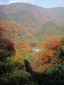 東京電力関係