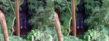 上から見た滝