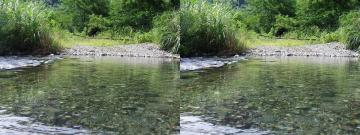 上の川の続き