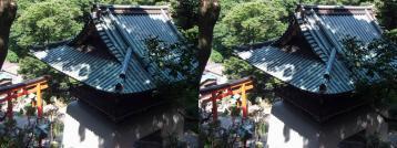 江の島神社の鳥居を