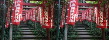 佐助稲荷神社の階段を上がる