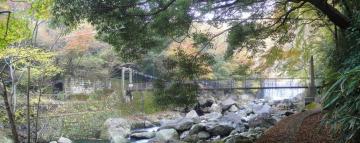 パノラマ 吊り橋と滝