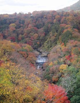 パノラマ 滝
