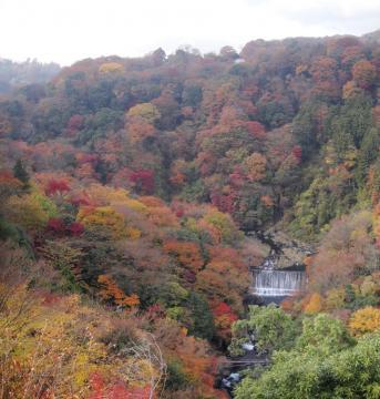 上から見た吊り橋と滝 パノラマ