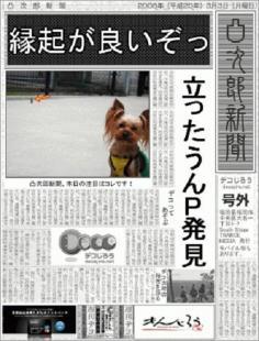 decojiro-20101015-010533.jpg