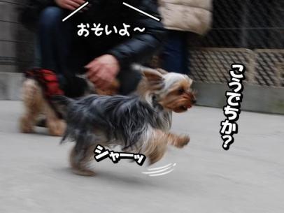 ranse2.jpg
