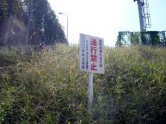 淀川河川敷BBQ