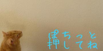 0808bana_convert_20110808123900.jpg
